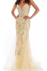 Morrell Maxie Embellished Tulle Gown w/Tie Back - Product Mini Image
