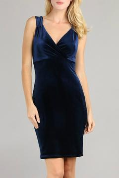 Embrace Navy Velvet Dress - Product List Image