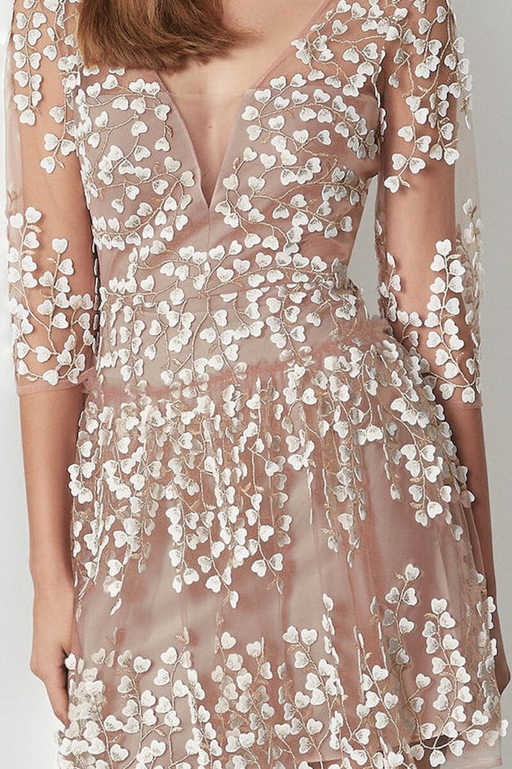 BCBG MAXAZRIA Embroidered A-Line Dress - Back Cropped Image