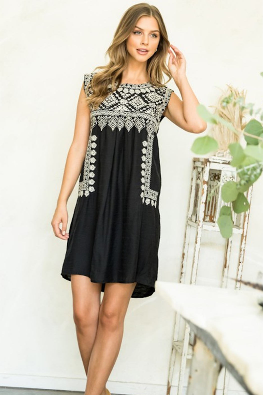 Thml Embroidered Black Dress - Front Cropped Image