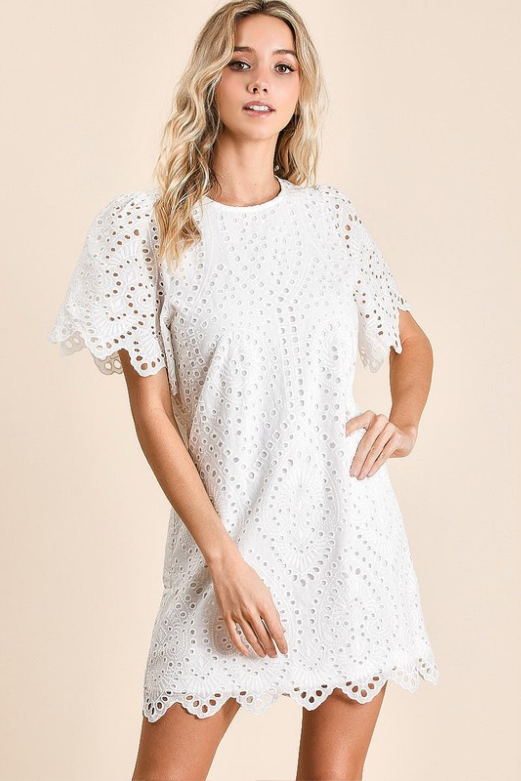 Olivaceous  Embroidered Eyelet Dress - Front Full Image