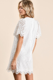 Olivaceous  Embroidered Eyelet Dress - Back cropped
