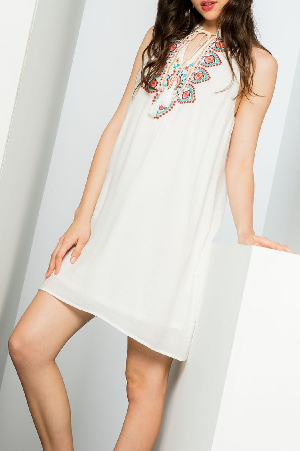 THML Clothing Embroidered Halter Dress - Front Full Image