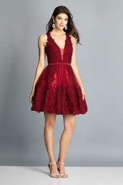 Dave and Johnny Embroidered Lace & Tulle Racerback Dress - Product Mini Image