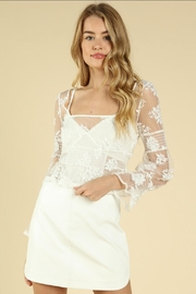 Wild Honey Embroidered Mesh Top - Product Mini Image