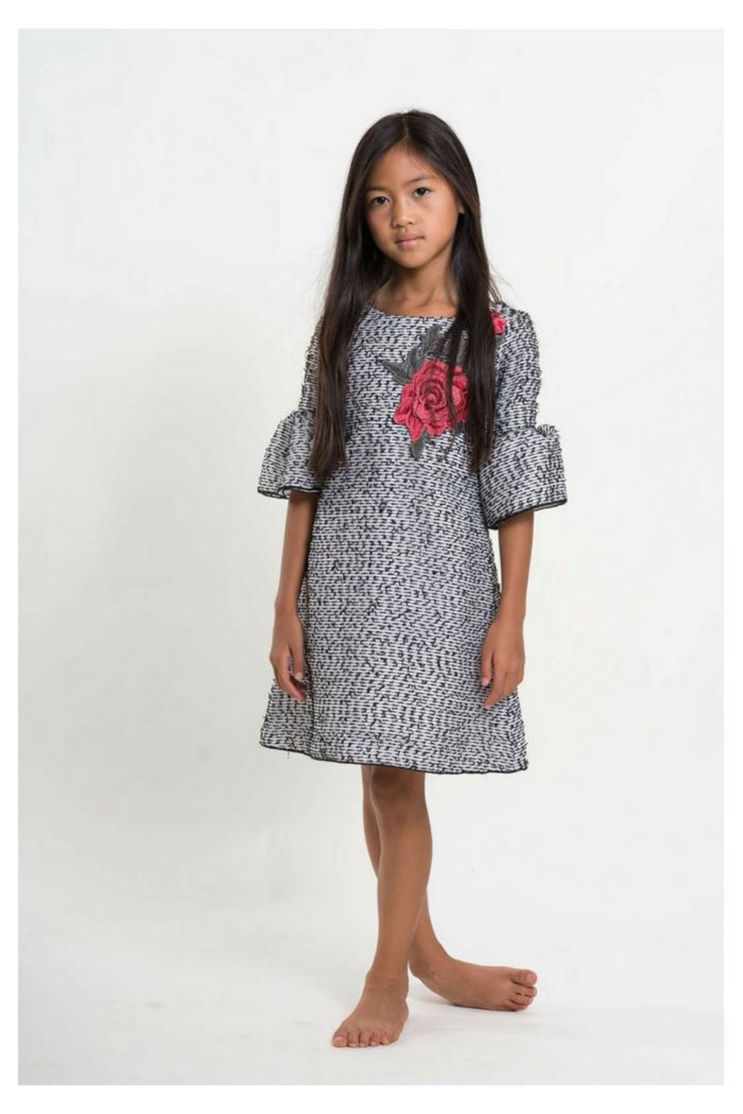Zoe Embroidered Organza Dress - Main Image