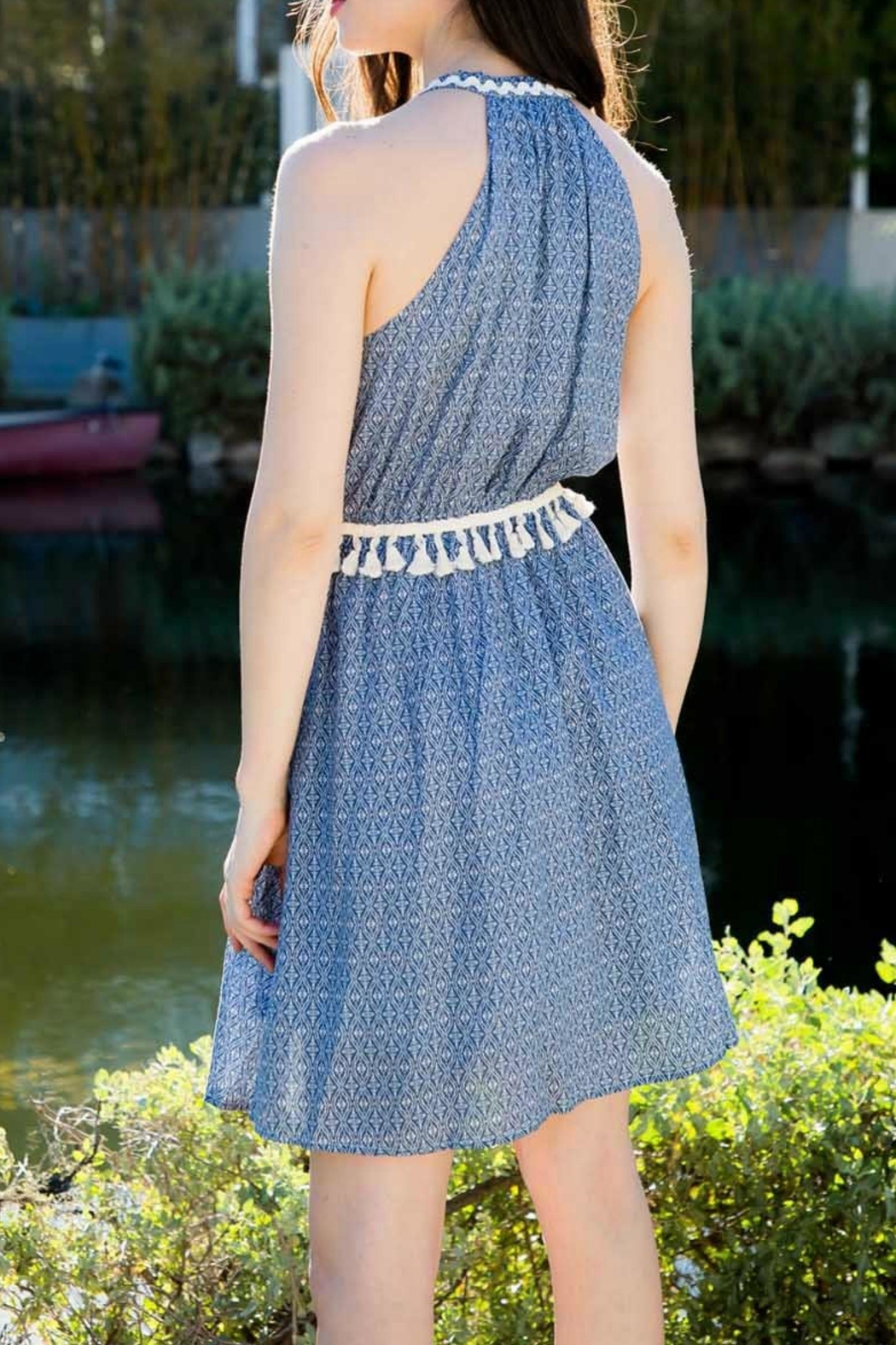 THML Clothing Embroidered Pompom Dress - Front Full Image