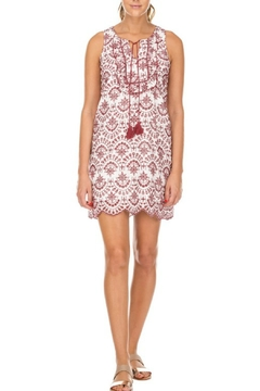 Shoptiques Product: Embroidered Ruffles Dress
