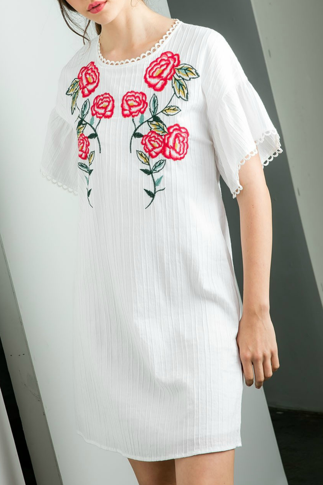 THML  Embroidered Shift Dress - Main Image