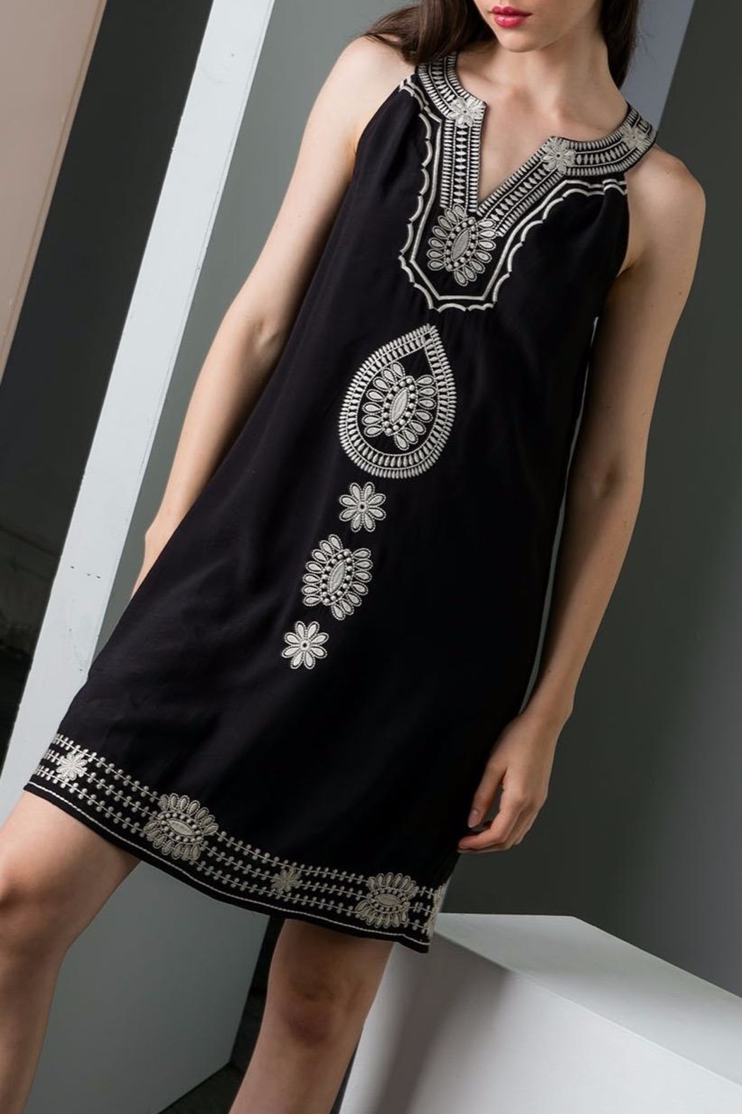 THML Clothing Embroidered Shift Dress - Main Image