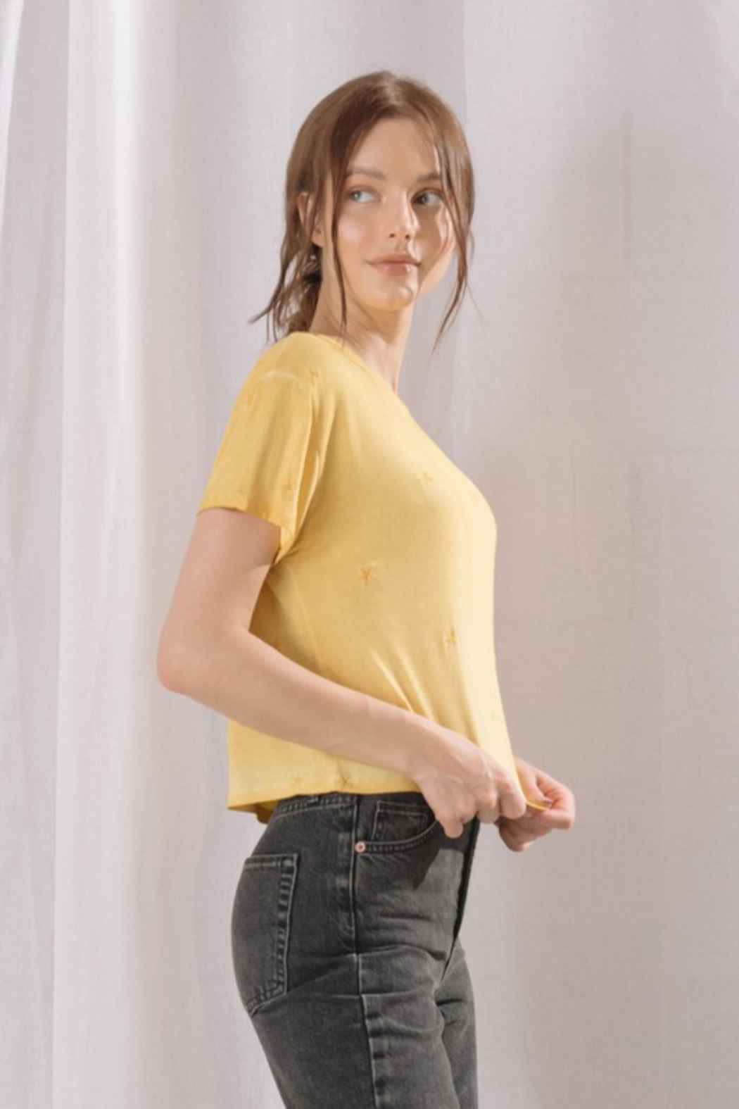 storia Embroidered Star Cropped Tee - Front Full Image
