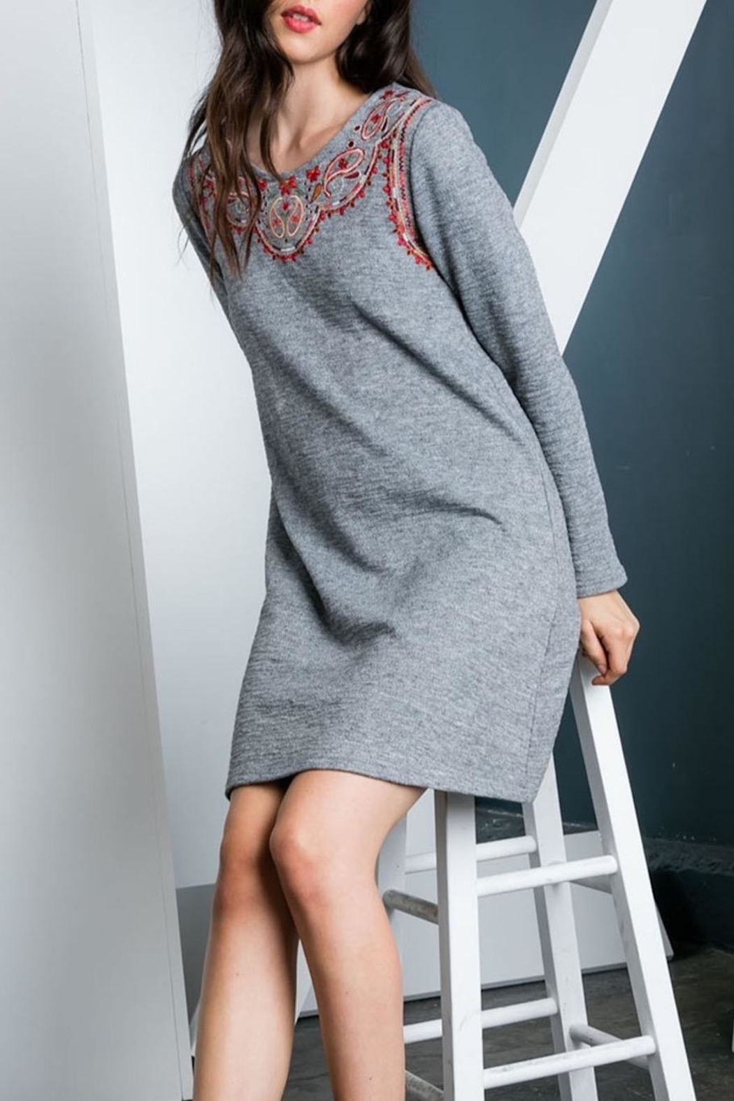 THML Clothing Embroidered Sweater Dress - Back Cropped Image