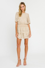 Endless Rose Embroidered Tiered Mini Skirt - Other