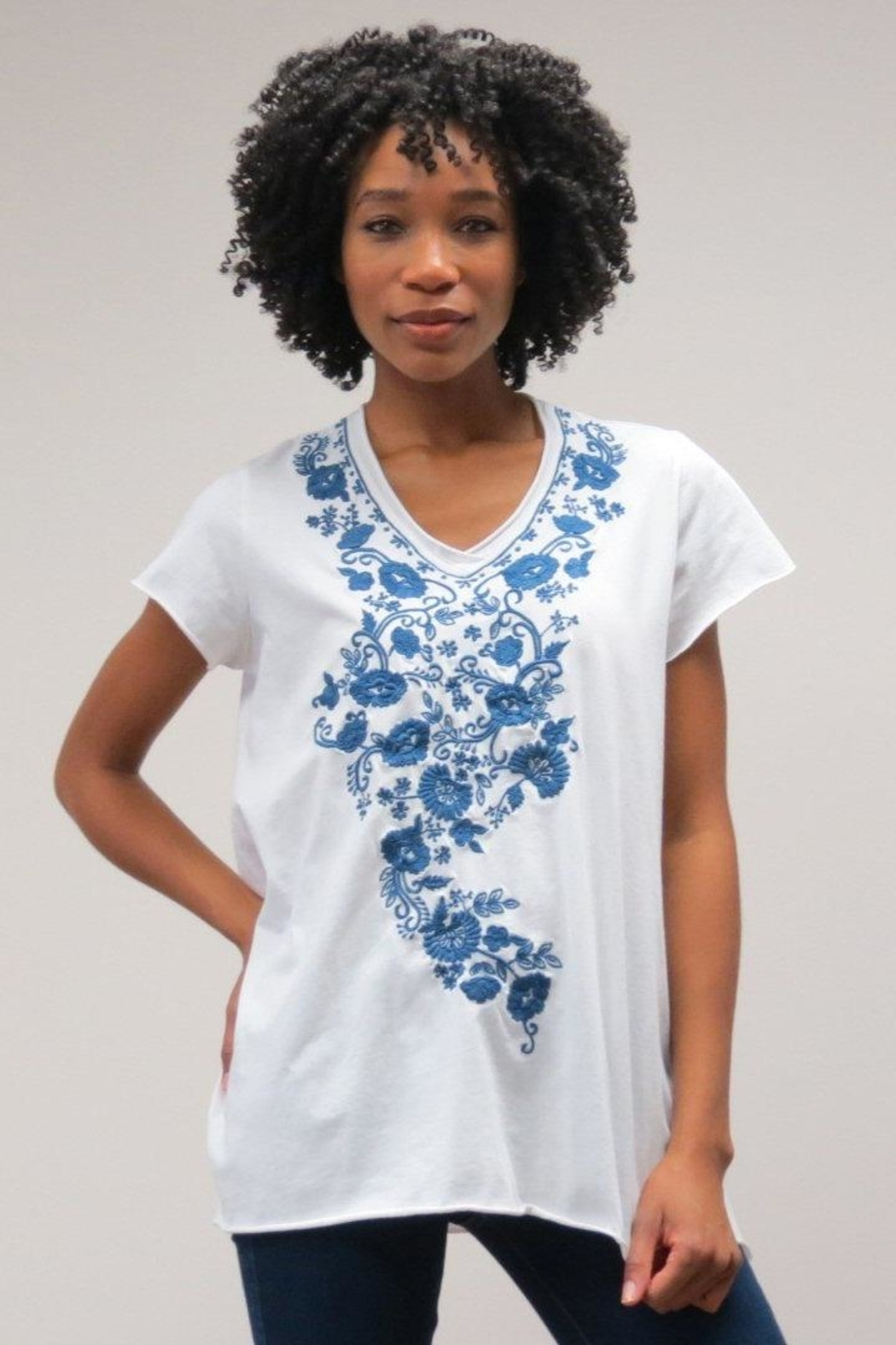Caite Embroidered V-Neck Tee - Front Cropped Image