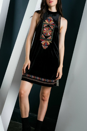Thml Embroidered Velvet Dress - Product Mini Image