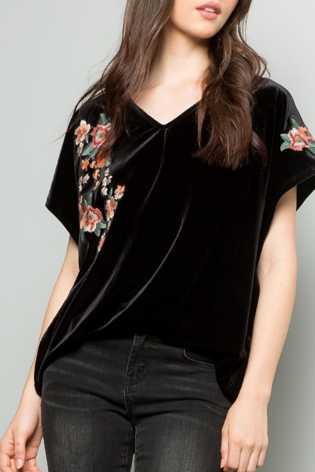 THML Clothing Embroidered Velvet Top - Side Cropped Image