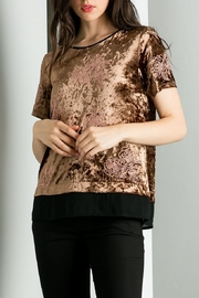 THML Clothing Embroidered Velvet Top - Product Mini Image