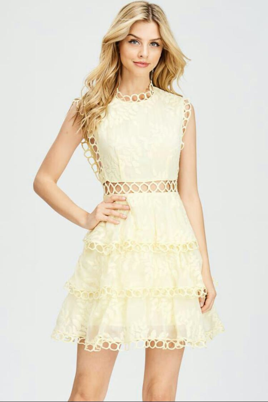 the clothing company Embroidery Crochet Dress - Main Image