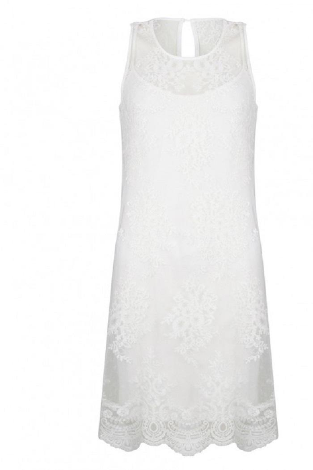 EsQualo Embroidery Mesh Dress - Front Cropped Image
