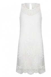 EsQualo Embroidery Mesh Dress - Front cropped