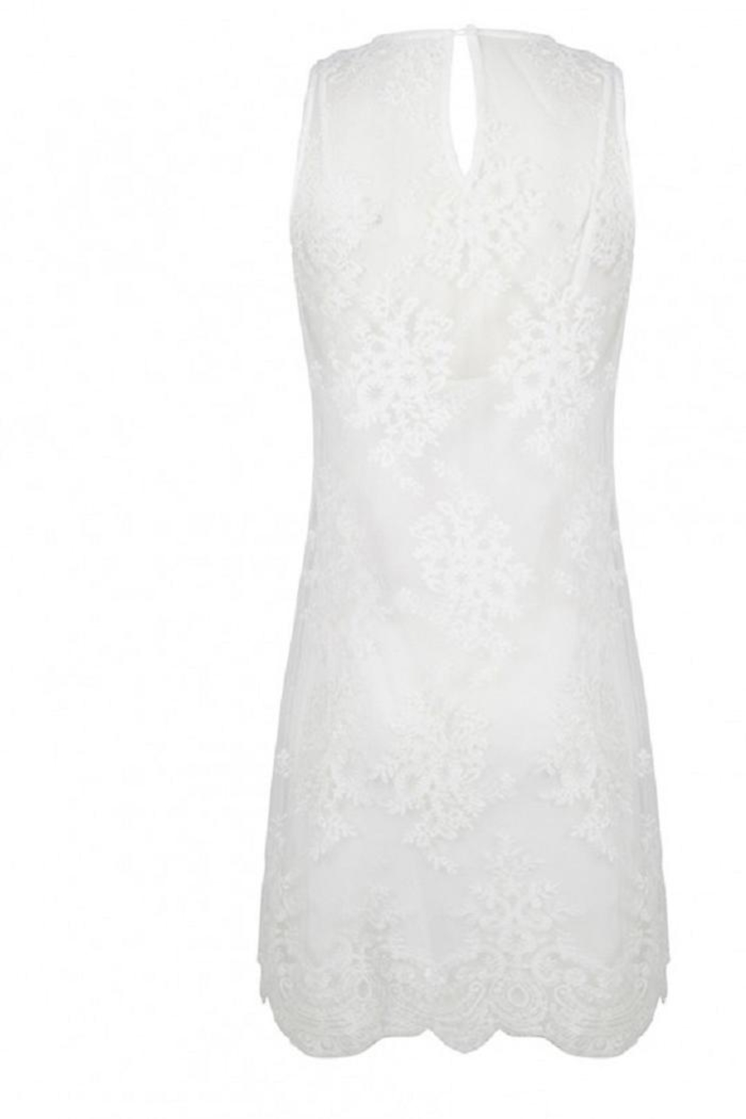 EsQualo Embroidery Mesh Dress - Front Full Image