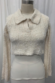 Emory Park Collared Crop Top - Product Mini Image