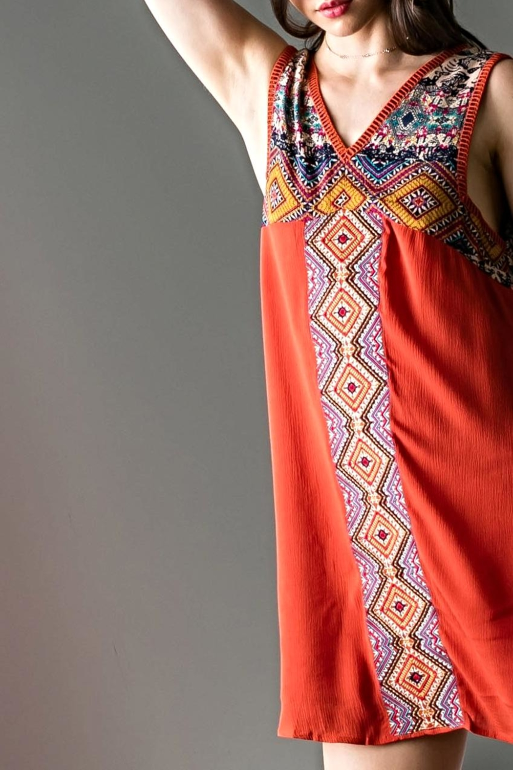 THML Clothing Empire Embroidery Dress - Front Full Image