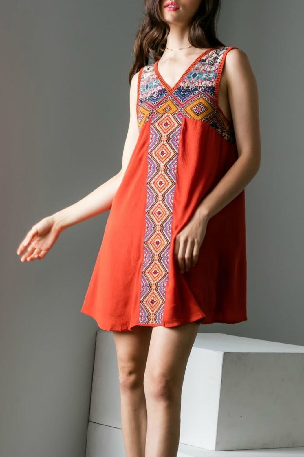 THML Clothing Empire Embroidery Dress - Main Image