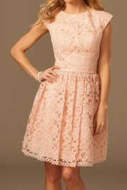 Jovani Enchanting Blush Dress - Product Mini Image