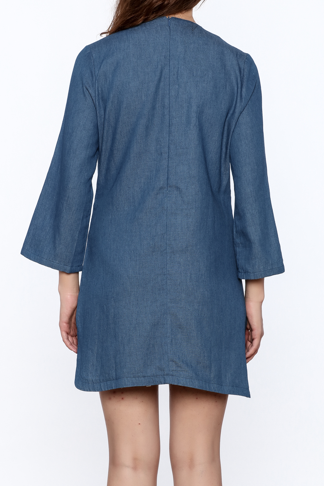 Endless Rose Denim Shift Dress - Back Cropped Image