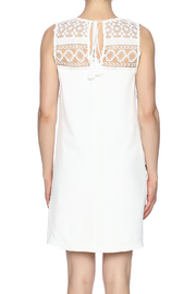 Endless Rose Embroidered Sleeveless Sheath - Back cropped