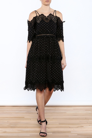 Endless Rose French Dot Dress - Product Mini Image