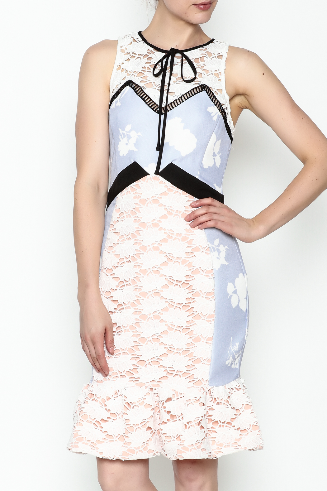 Endless Rose Sweet Lace Dress - Front Cropped Image