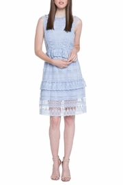 Endless Rose A-Line Sleeveless Dress - Product Mini Image