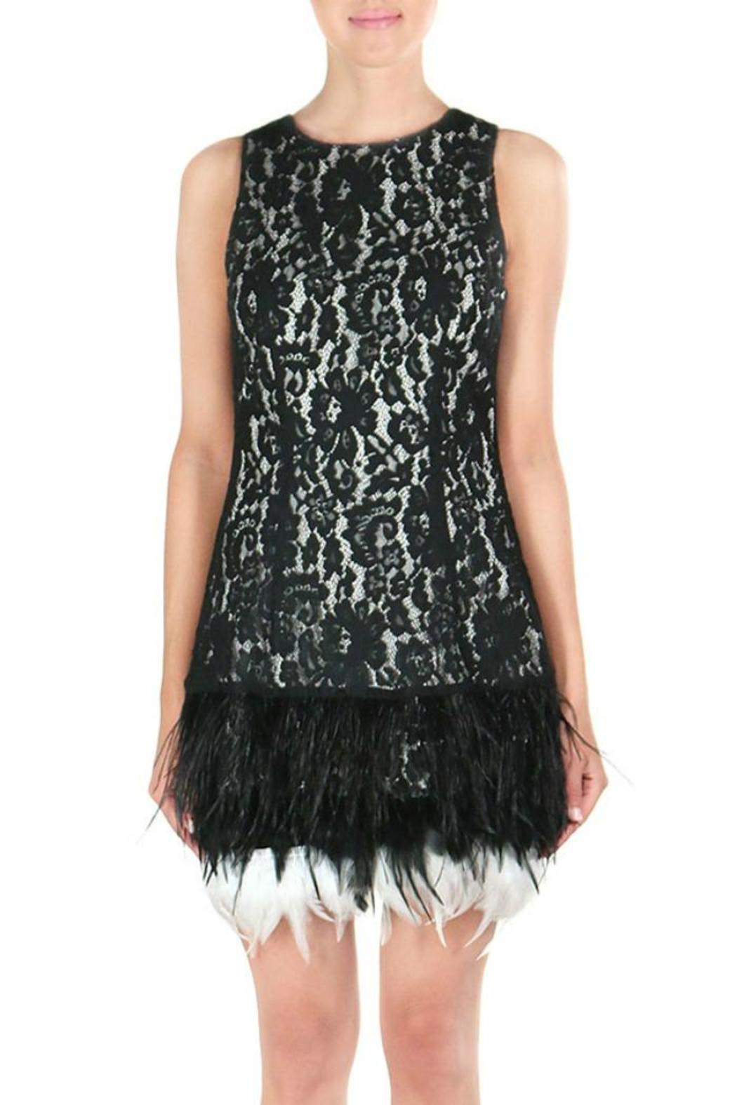 Endless Rose Feather Holiday Dress - Main Image