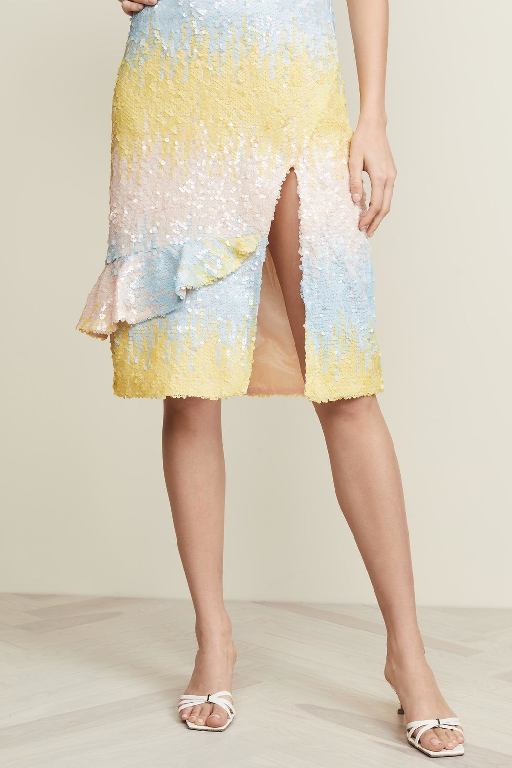 Endless Rose Ombre Sequin Skirt - Main Image