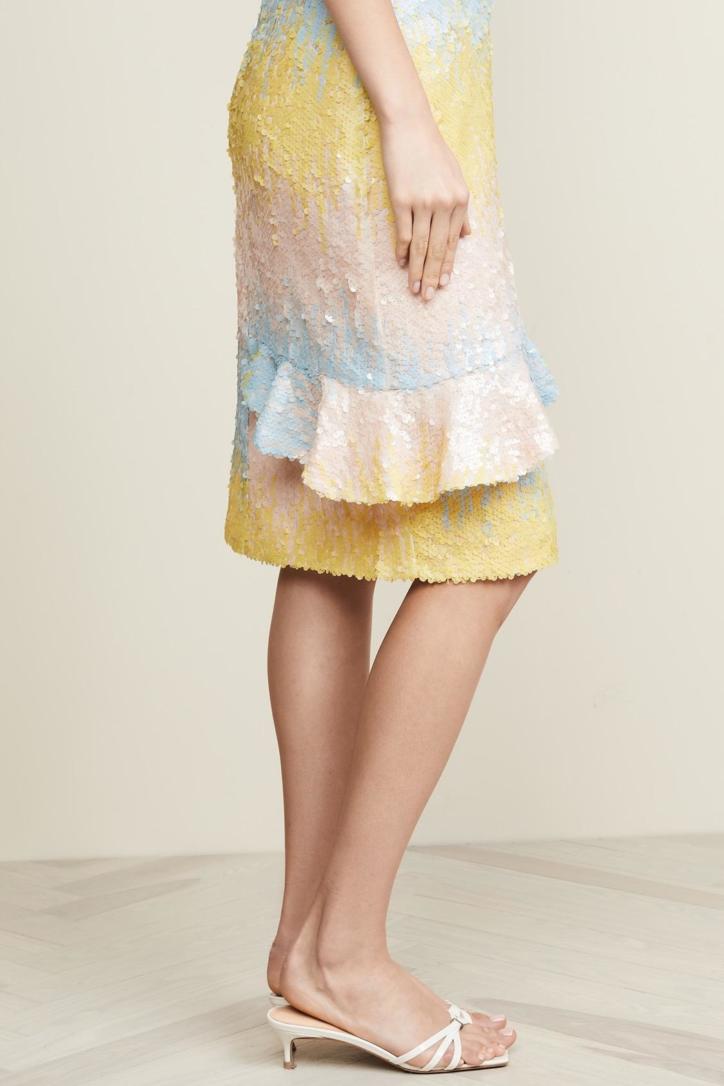 Endless Rose Ombre Sequin Skirt - Front Full Image
