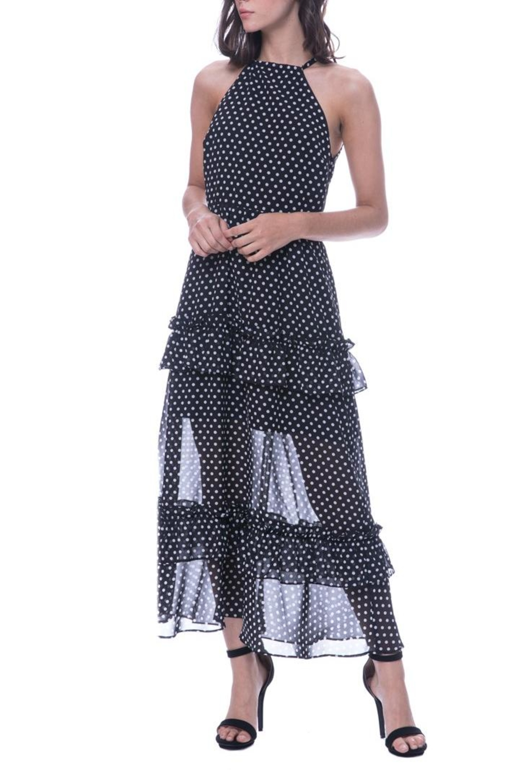 Endless Rose Polka Dot Maxi - Main Image