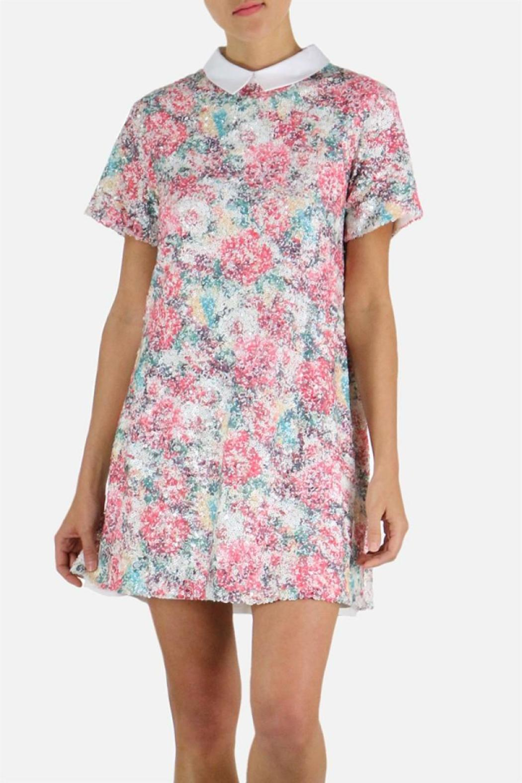 Endless Rose Sequin Collar Dress - Main Image