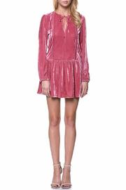 Endless Rose Velvet Longsleeved Dress - Product Mini Image