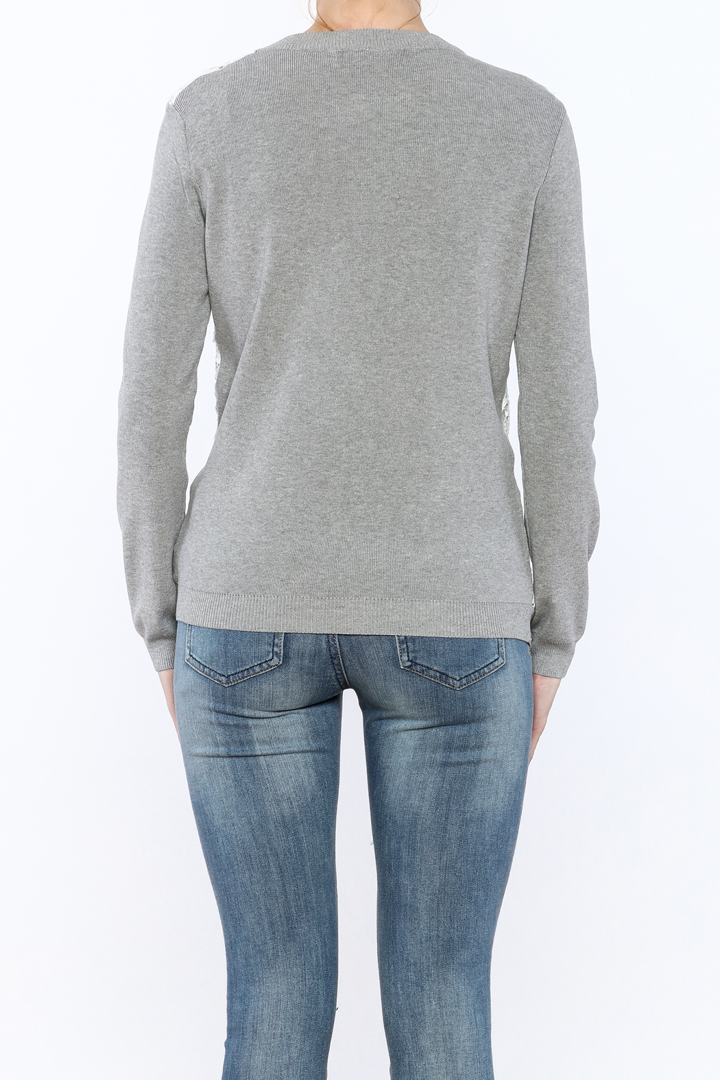 English Factory See-Through Pullover - Back Cropped Image