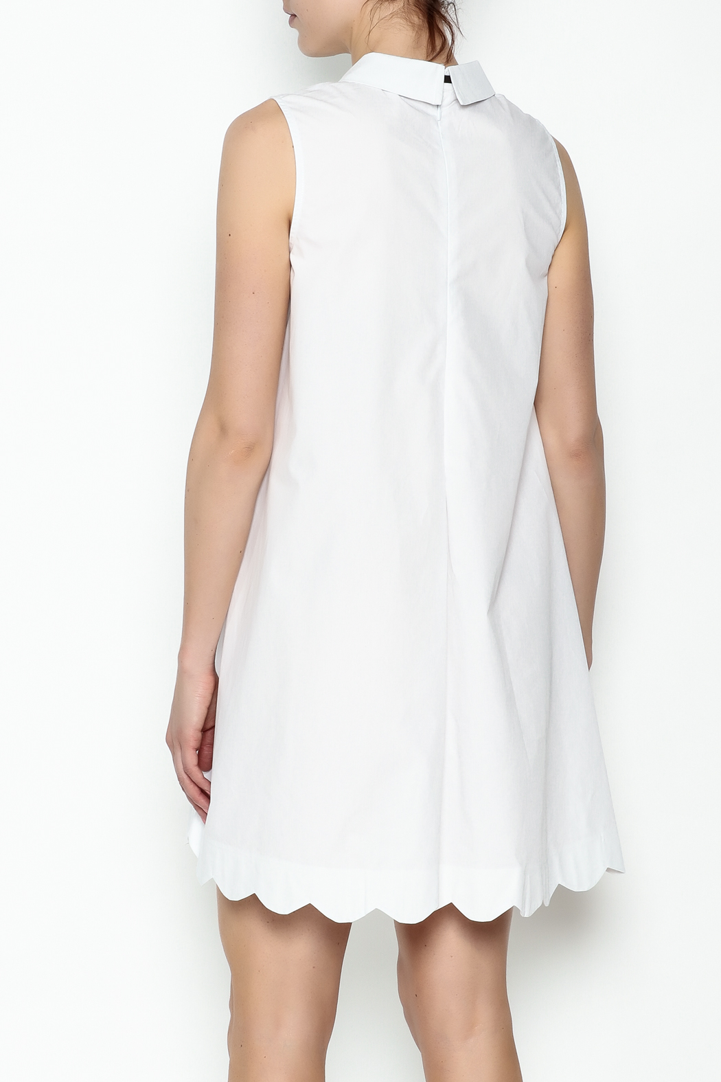 English Factory Poplin Collar Dress - Back Cropped Image