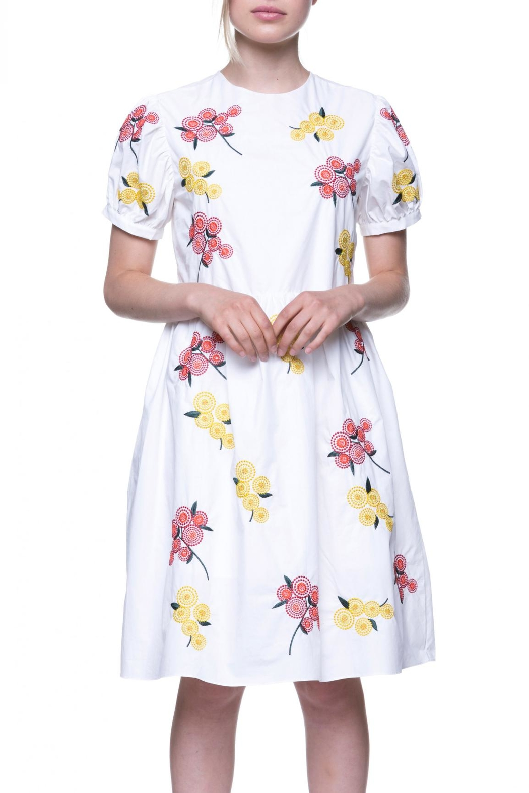English Factory Floral Embroidered Dress - Back Cropped Image