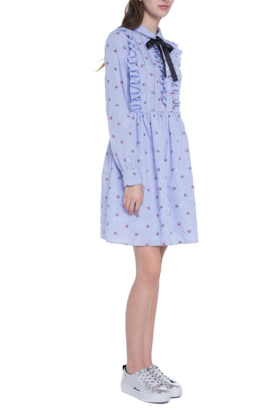 English Factory Ruffle Embroidery Dress - Side Cropped Image