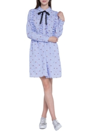 English Factory Ruffle Embroidery Dress - Front full body