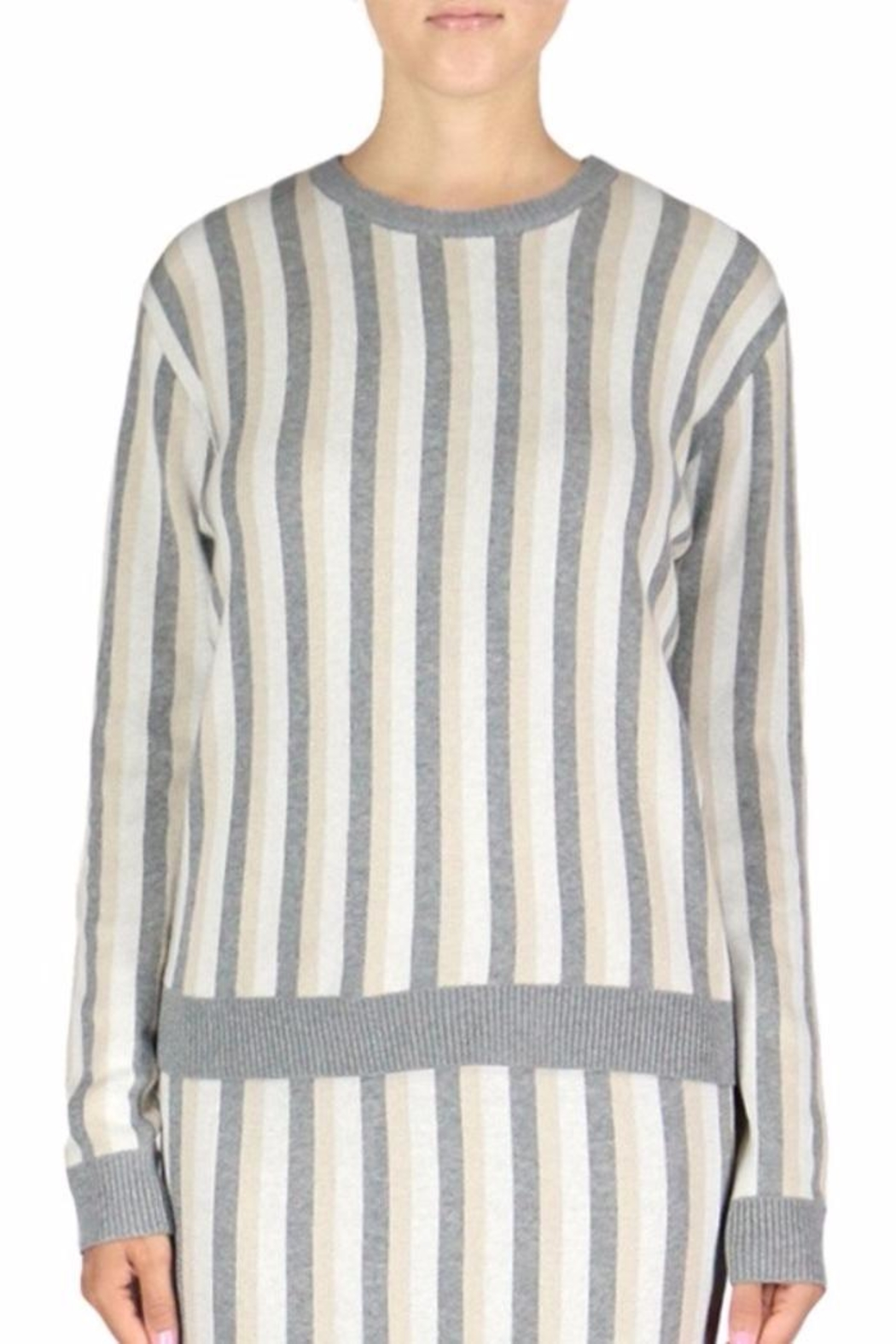 English Factory Stripe Sweater - Front Cropped Image
