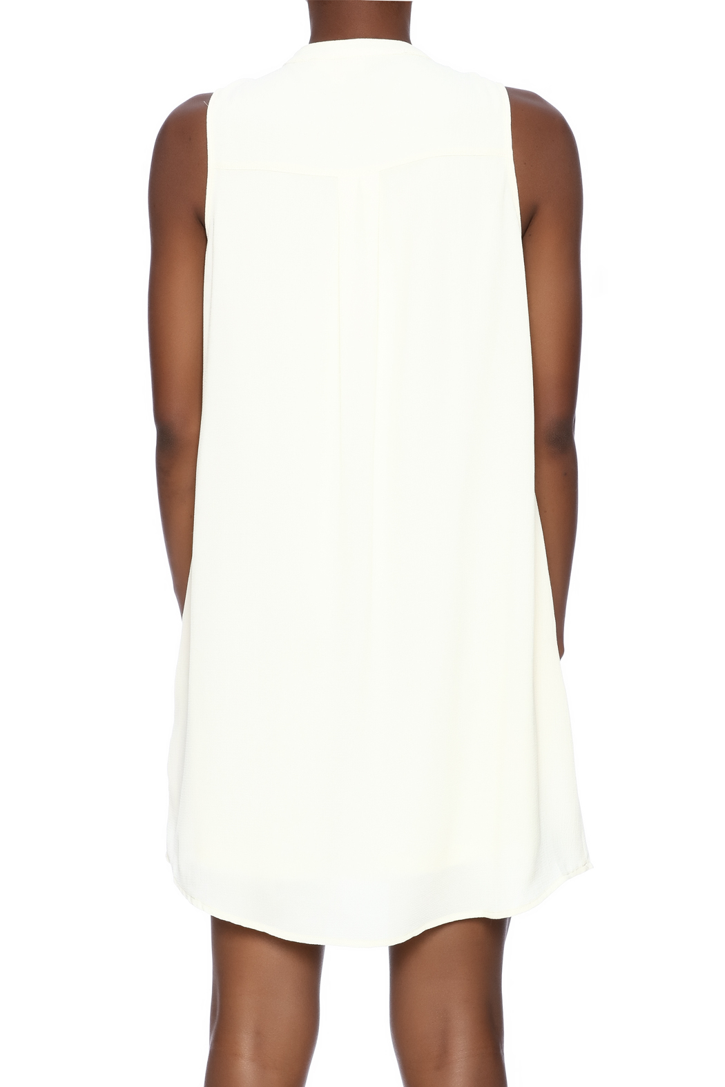 Entro Button Down Dress - Back Cropped Image