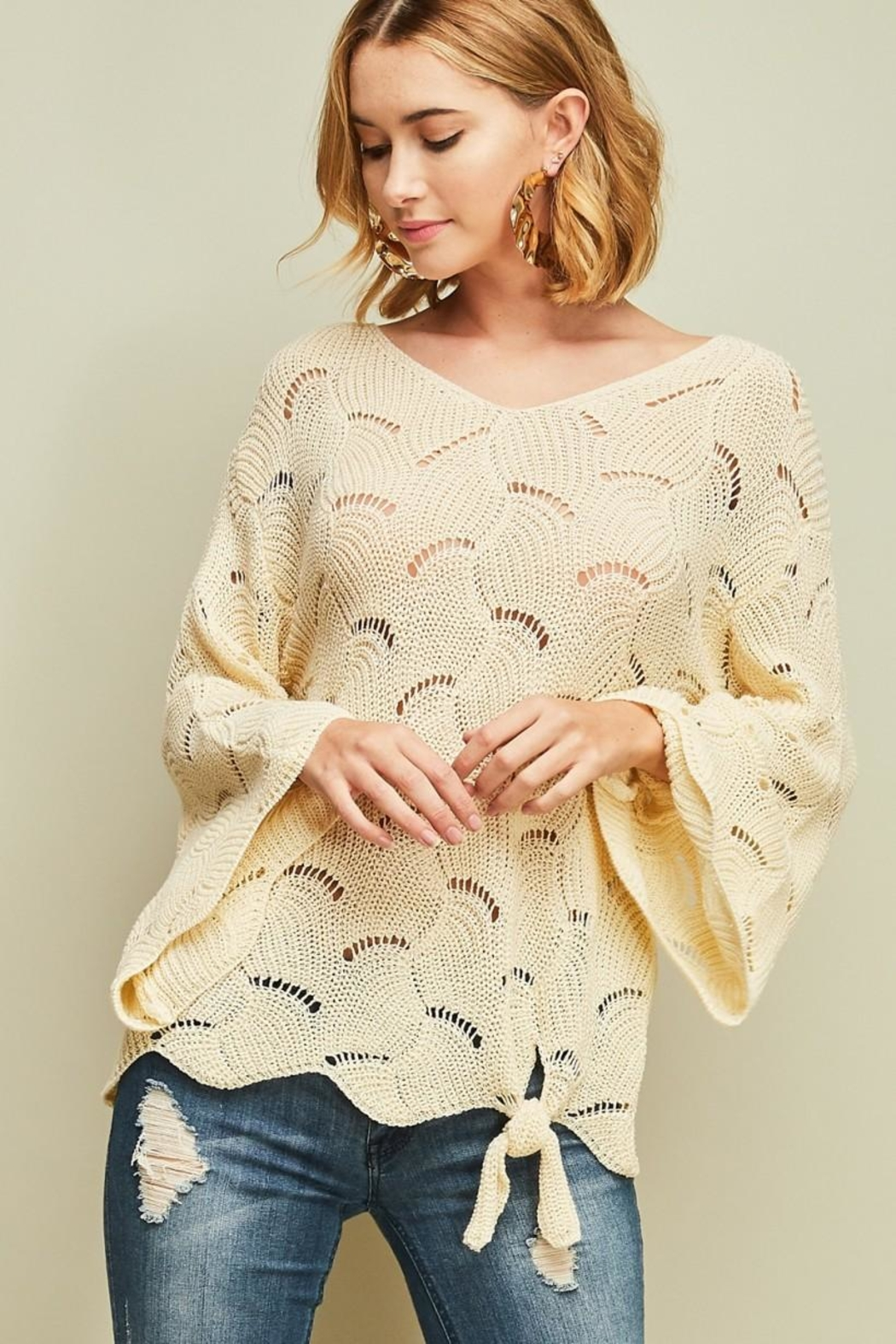 Entro Crochet Knit Top - Front Full Image