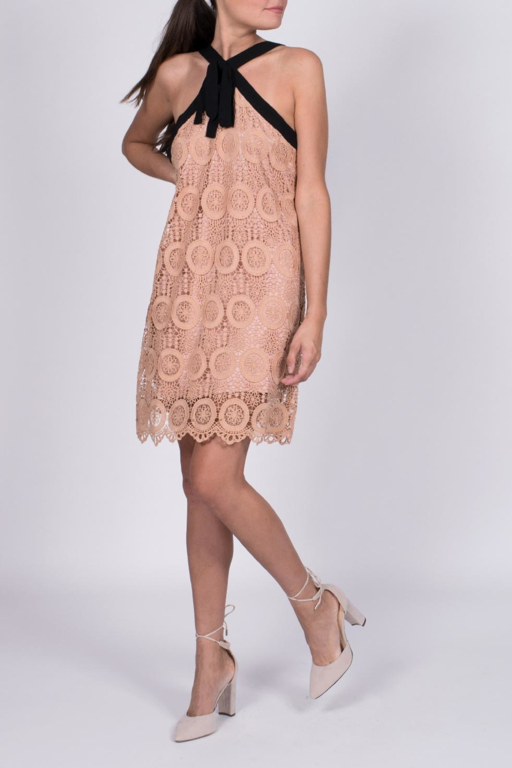 Entro Crochet Tie Dress - Front Cropped Image