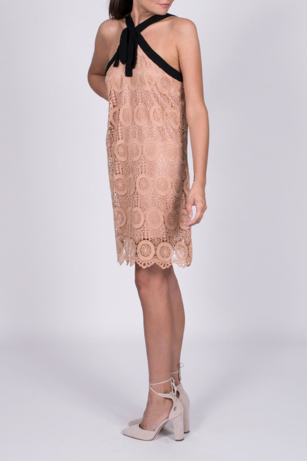 Entro Crochet Tie Dress - Side Cropped Image